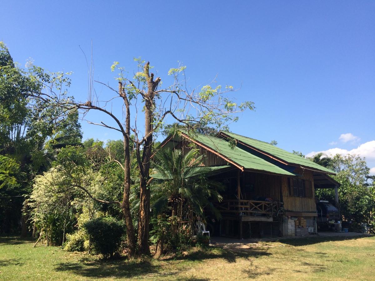 ชวนไปฟอกปอดที่สวนเพชรทับลานโฮมสเตย์ อ.นาดี จ.ปราจีนบุรี